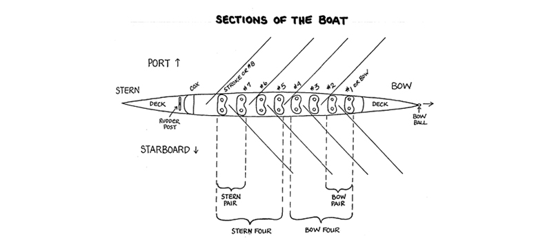 Rowing Boat Diagram - Wiring Diagrams